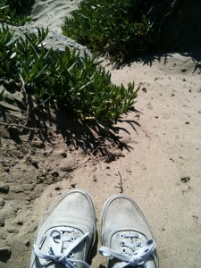 my feet looking longingly at the warm sand. i reminded them how awful it is to bike with sand in one's shoes.